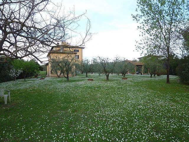 Villa singola - Santa Maria a Monte (10/20)