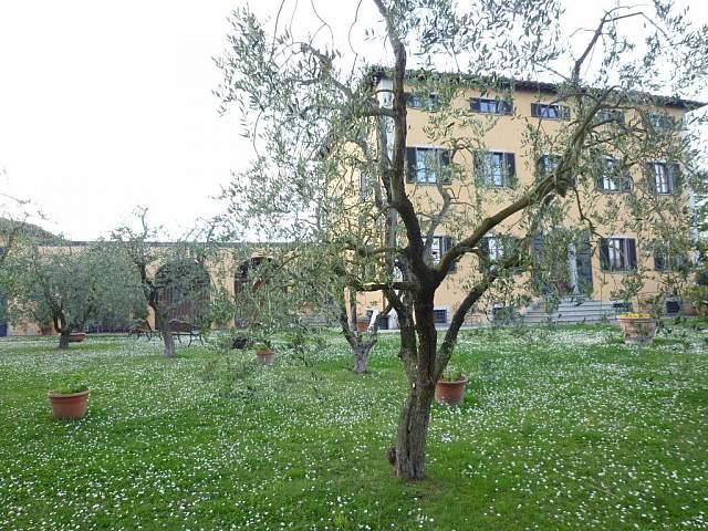 Villa singola - Santa Maria a Monte (20/20)