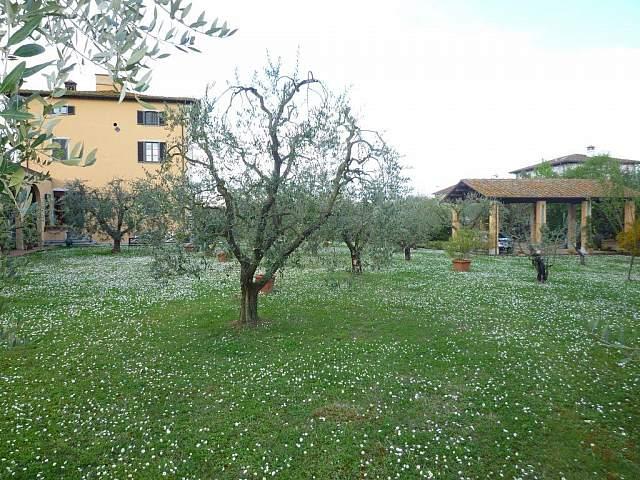 Villa singola - Santa Maria a Monte (14/20)