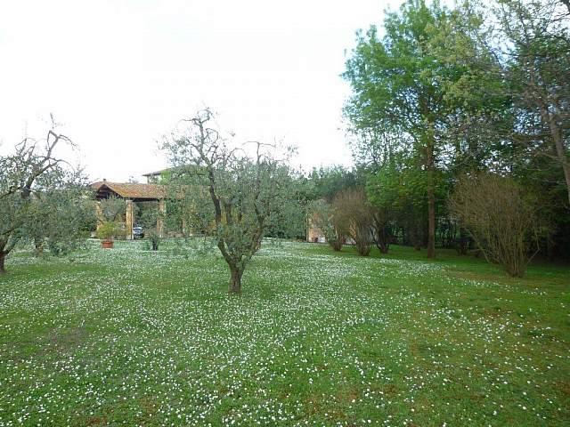 Villa singola - Santa Maria a Monte (12/20)