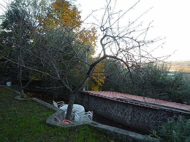 Rustico - La Croce, Buti (7/12)