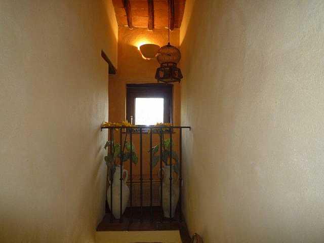 Colonica - La Croce, Buti (10/17)