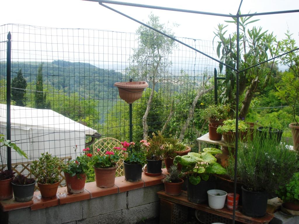 Soluzione Indipendente in vendita a Palaia, 6 locali, prezzo € 149.000 | CambioCasa.it