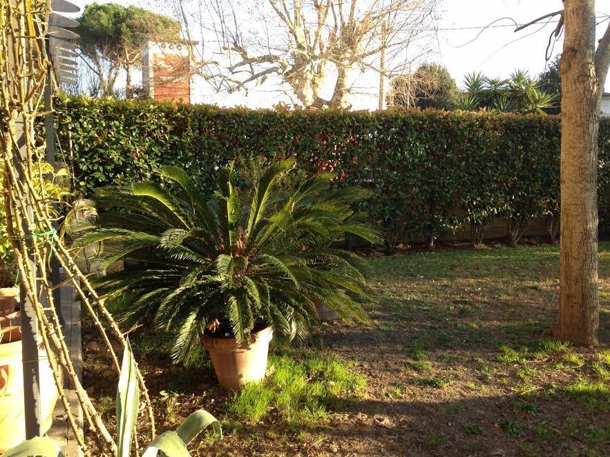Porzione di casa in vendita a Ghezzano, San Giuliano Terme (PI)