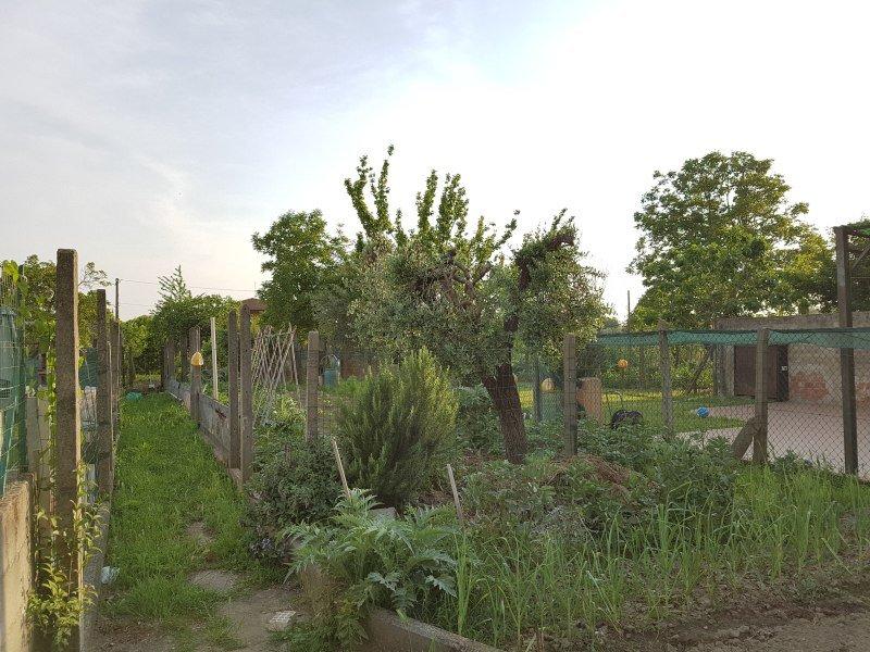 Terratetto in vendita a San Frediano A Settimo, Cascina (PI)