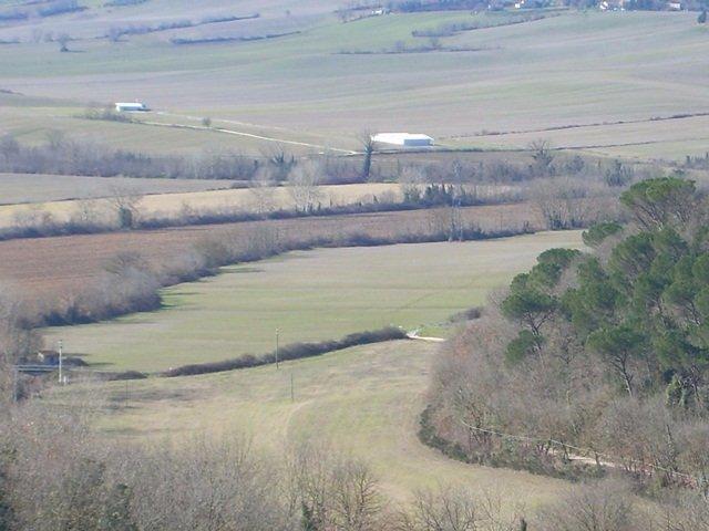 Azienda agricola in vendita a Colle di Val d'Elsa (SI)