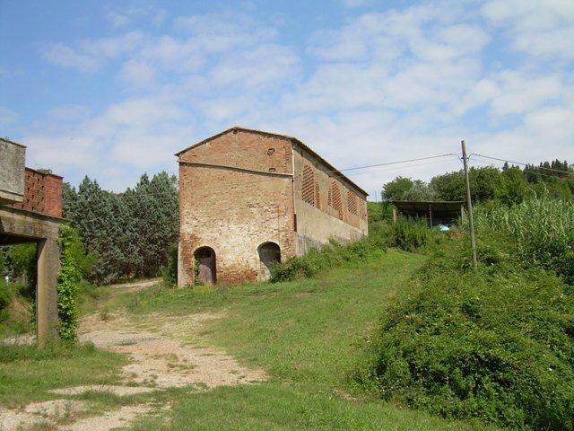 Azienda agricola in vendita a Castelfiorentino (FI)