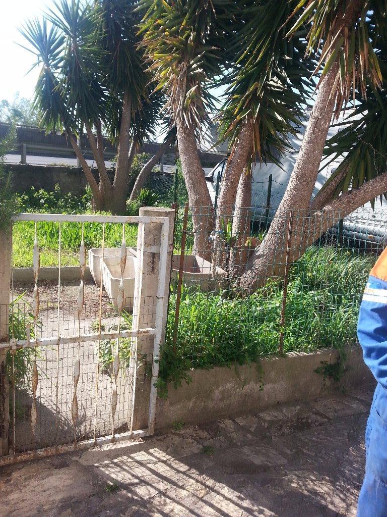 Terratetto in vendita a Avane, Vecchiano (PI)