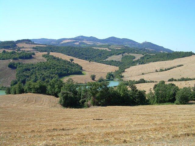 Azienda agricola in vendita a Volterra (PI)