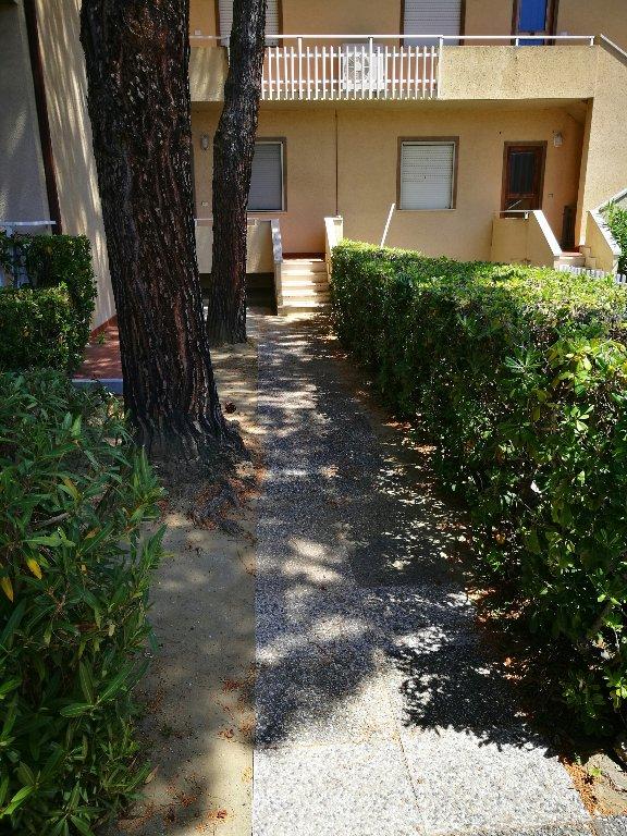 Appartamento in affitto - Castiglioncello, Rosignano Marittimo