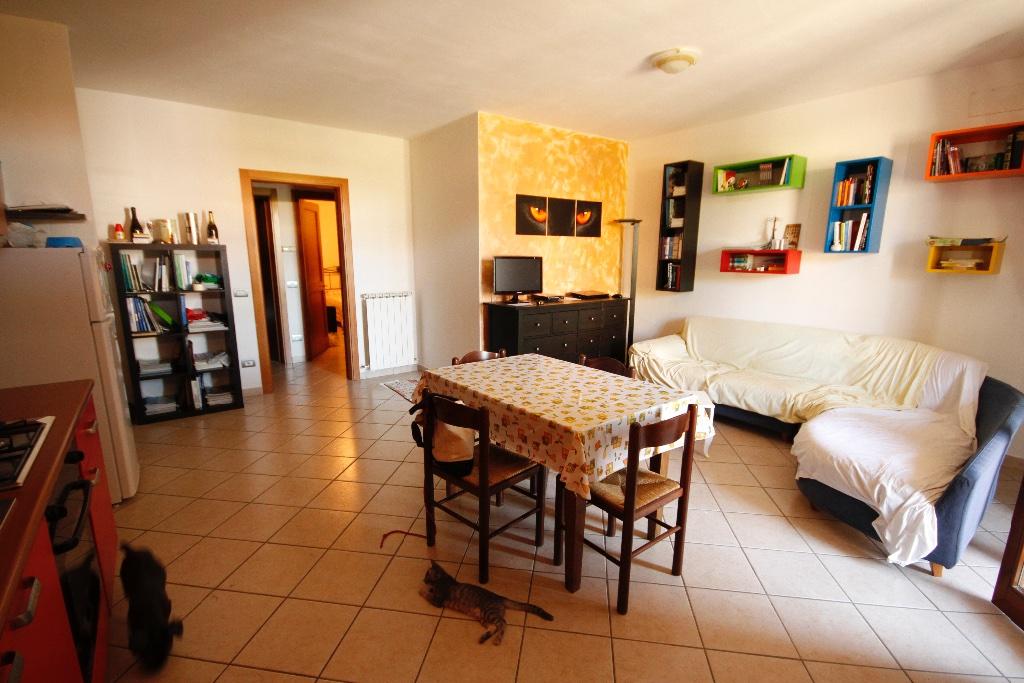 Appartamento in vendita a Asciano, 4 locali, prezzo € 160.000 | PortaleAgenzieImmobiliari.it