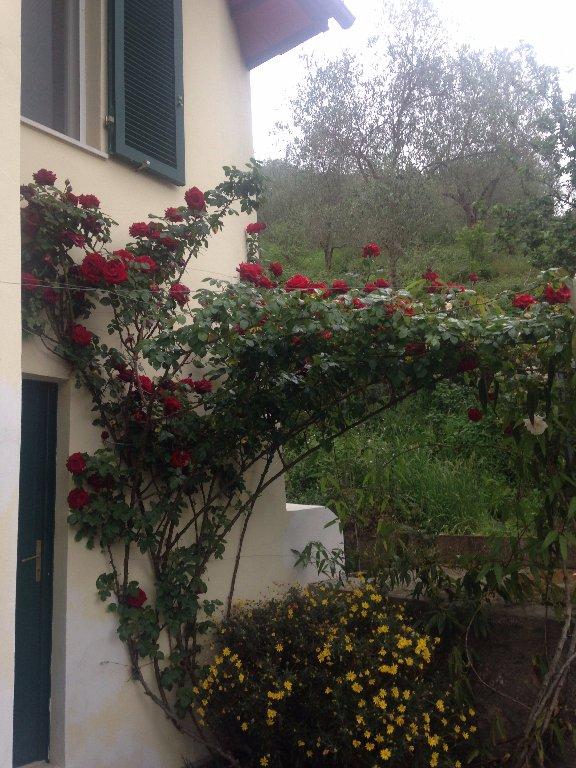 Soluzione Indipendente in vendita a San Giuliano Terme, 12 locali, prezzo € 440.000 | Cambio Casa.it