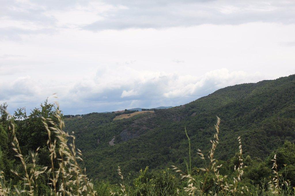 Foto 2/12 per rif. R1002