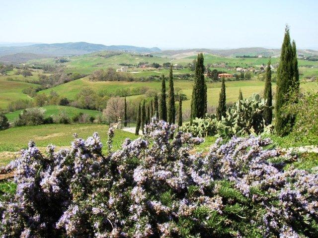 Villa in vendita a Manciano, 6 locali, prezzo € 750.000 | Cambio Casa.it