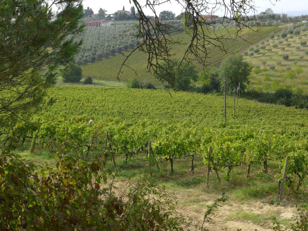 Agriturismo in vendita a Greve in Chianti, 15 locali, prezzo € 2.300.000 | Cambio Casa.it