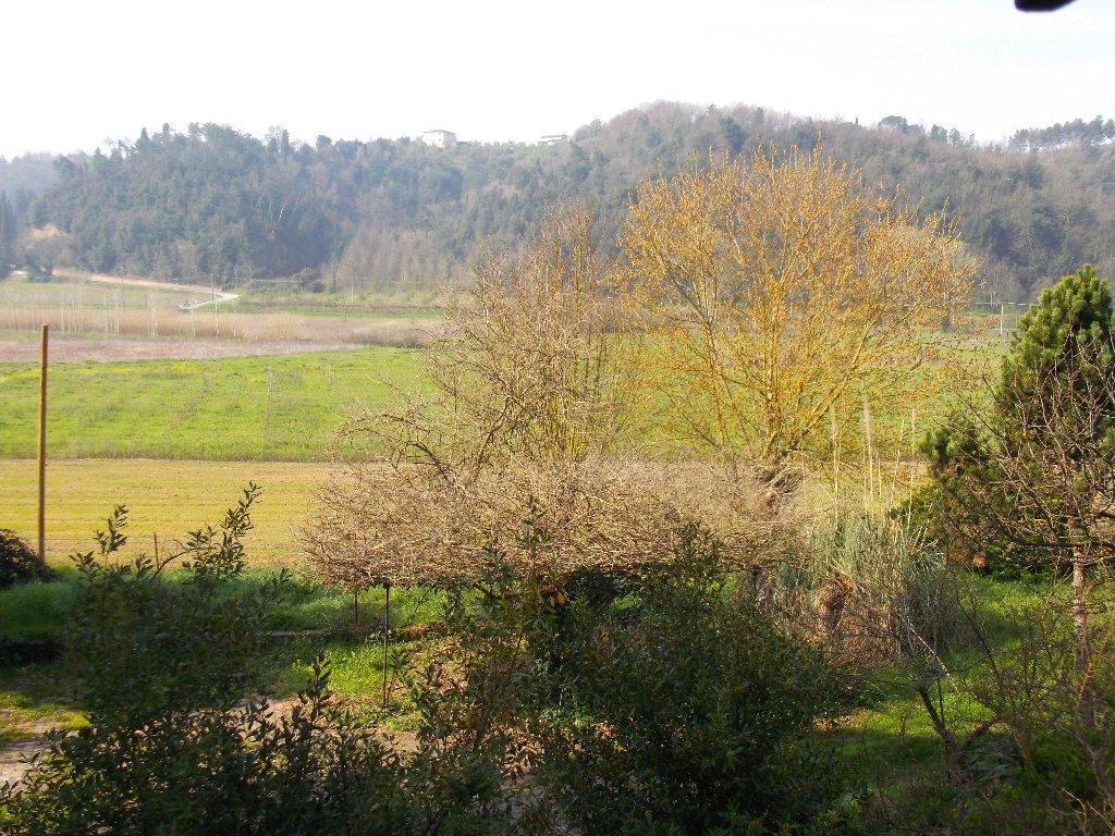 Porzione di casa in vendita a Montopoli in Val d'Arno (PI)
