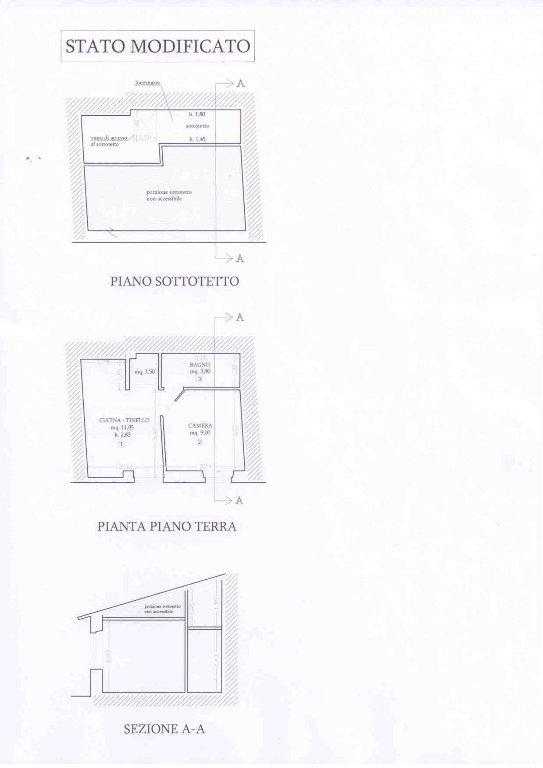Casa semindipendente in vendita - Forte dei Marmi