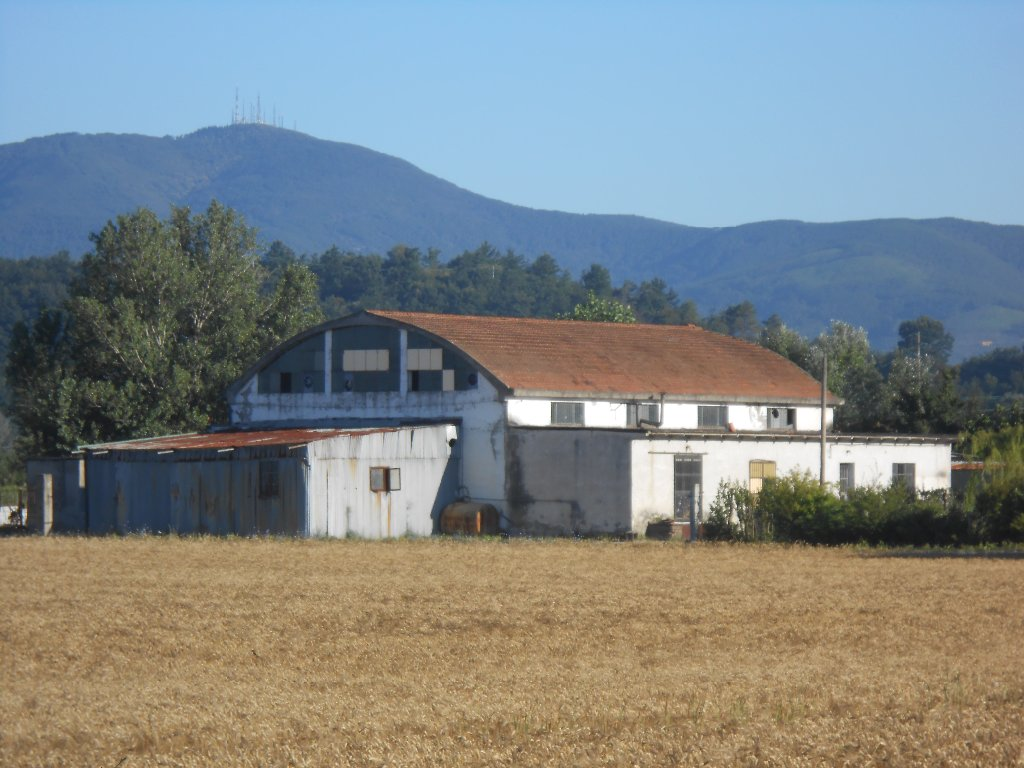 Capannone in vendita a Pontedera, 1 locali, Trattative riservate | CambioCasa.it