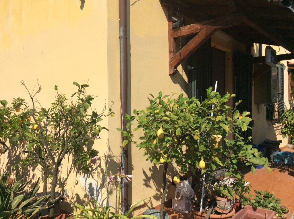 Villetta bifamiliare/Duplex in vendita, rif. 692