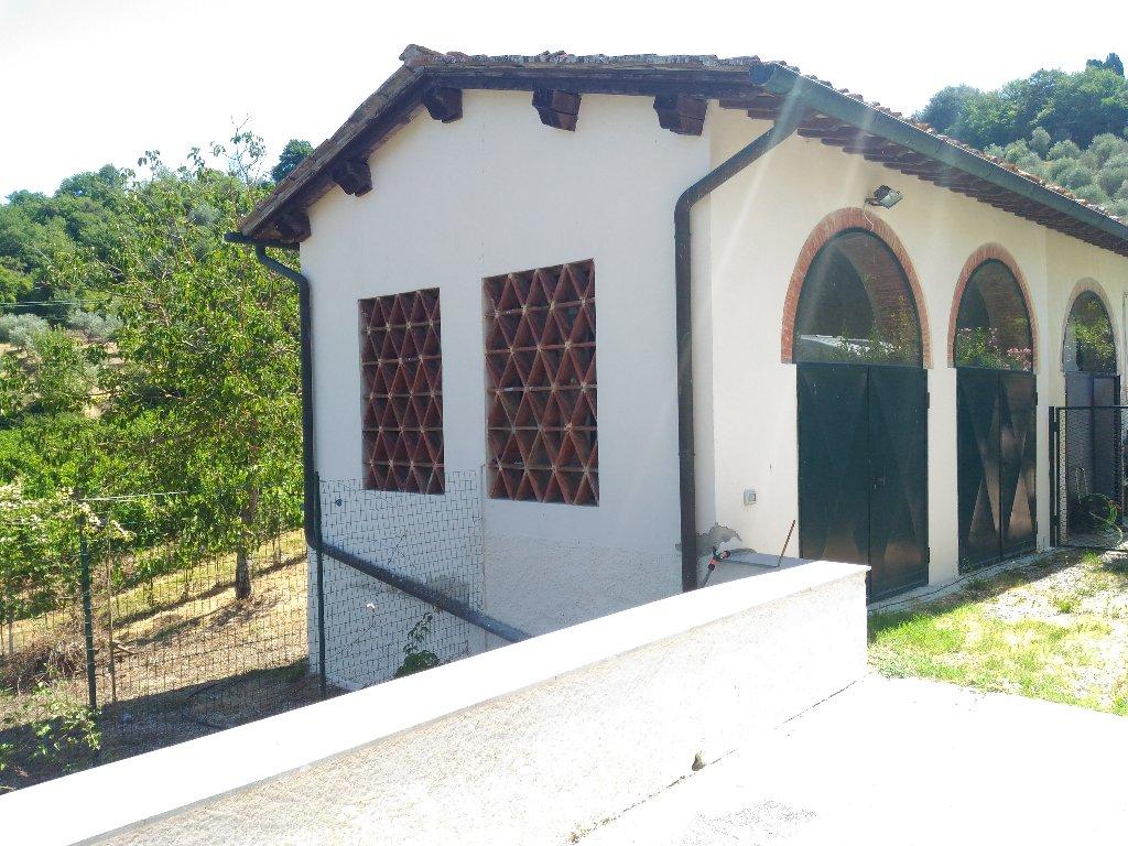 Villa Bifamiliare in Affitto a Lastra a Signa