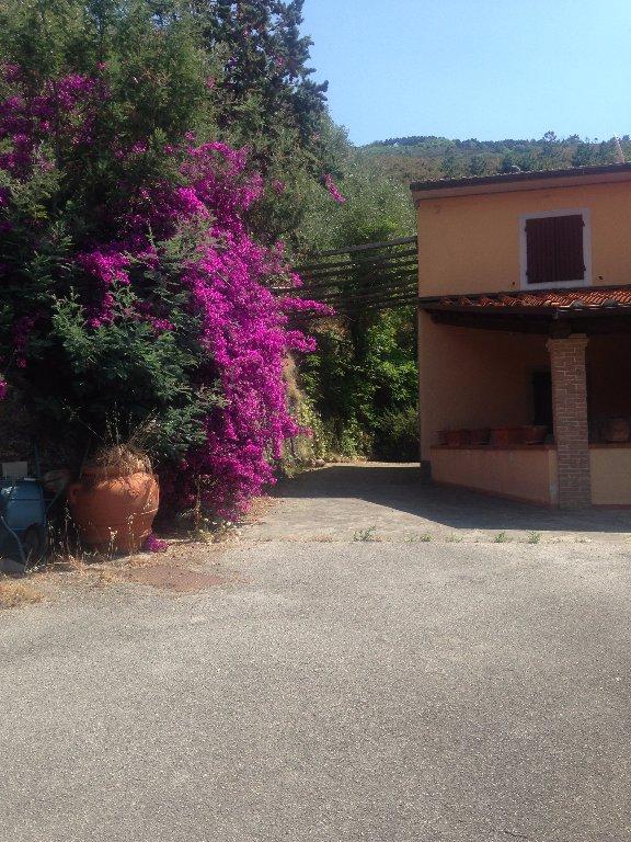 Rustico / Casale in vendita a Calci, 12 locali, prezzo € 530.000 | CambioCasa.it