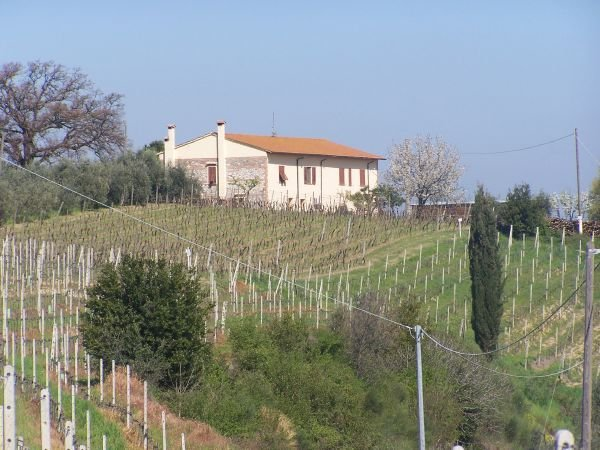 Azienda Agricola in vendita a Chianni, 12 locali, prezzo € 1.200.000 | CambioCasa.it