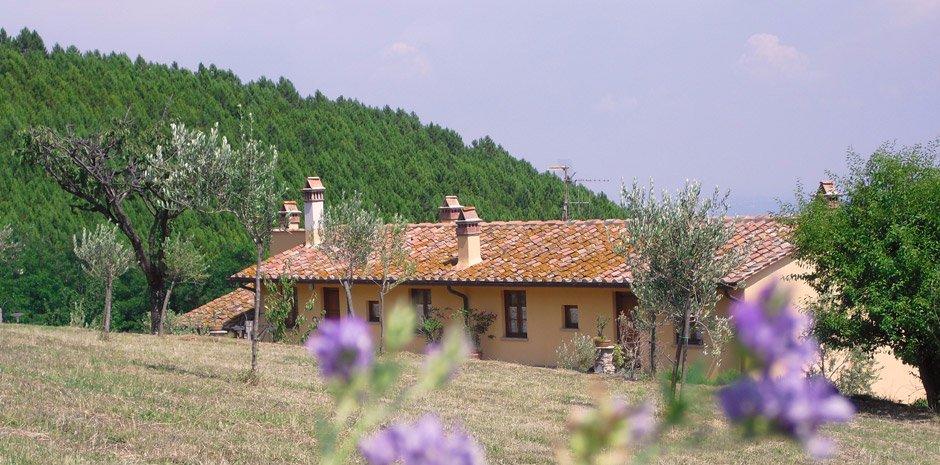 Agriturismo in vendita a Vicopisano, 12 locali, prezzo € 550.000   CambioCasa.it
