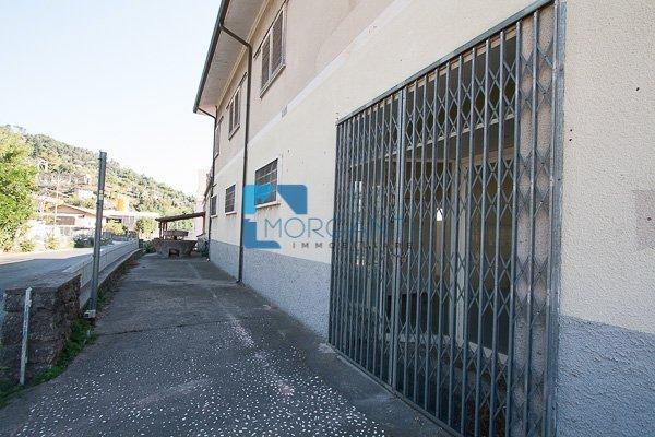 Stabile/Palazzo in vendita a Pietrasanta (LU)
