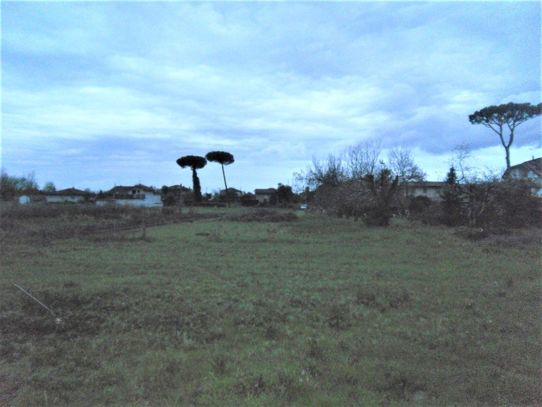 Foto 3/5 per rif. ter ed pietra 220