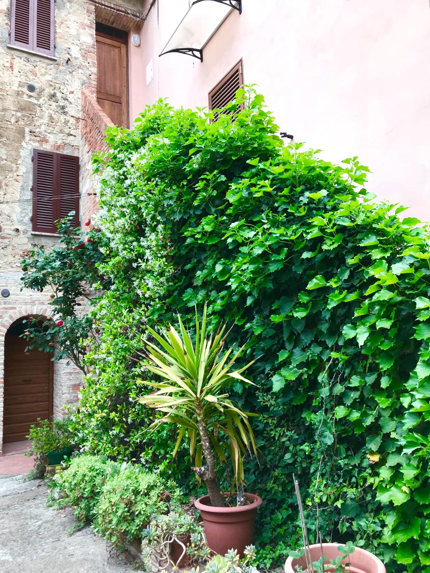 Appartamento in vendita a Asciano, 3 locali, prezzo € 75.000   CambioCasa.it