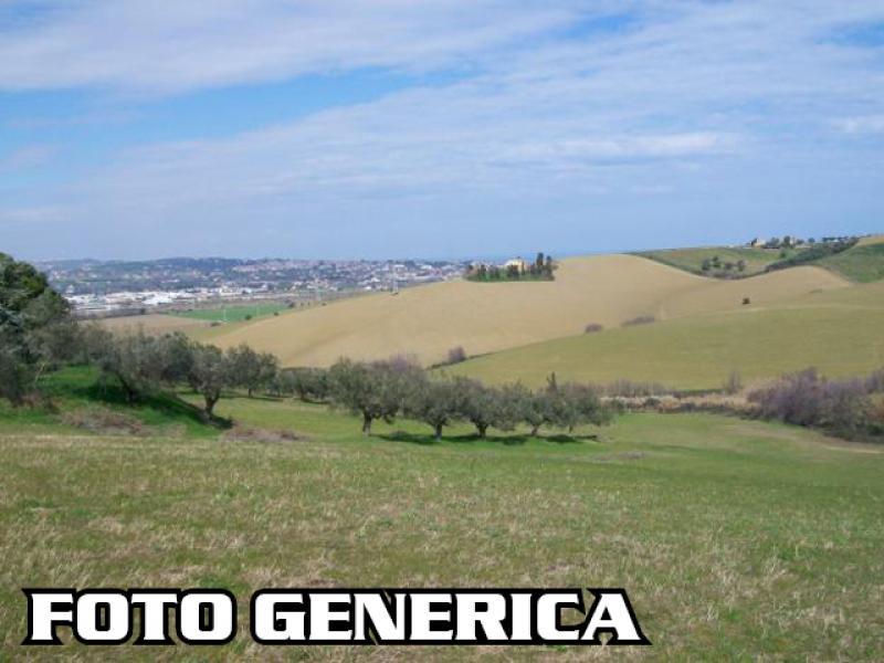 Terreno agricolo in vendita, rif. T42