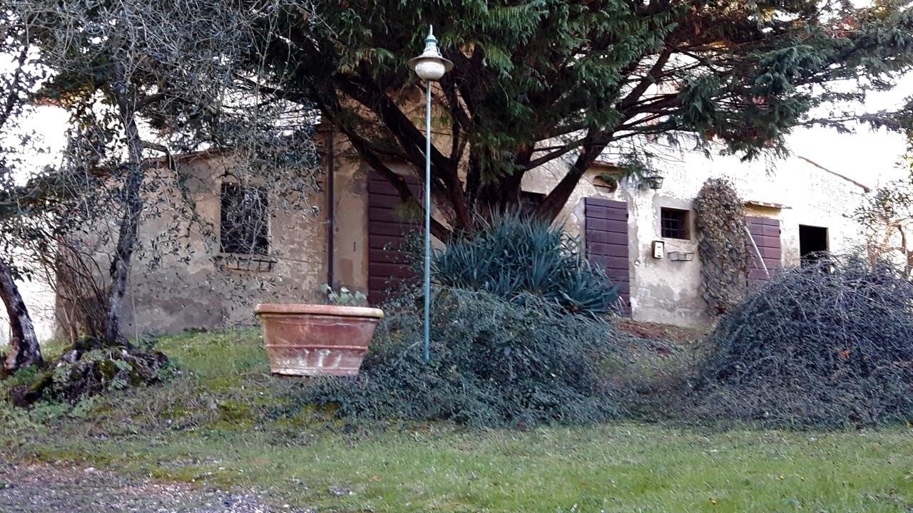 Colonica in vendita - Palaia