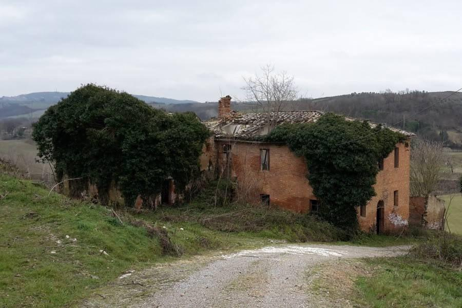 Farmhouse for sale in Asciano (SI)