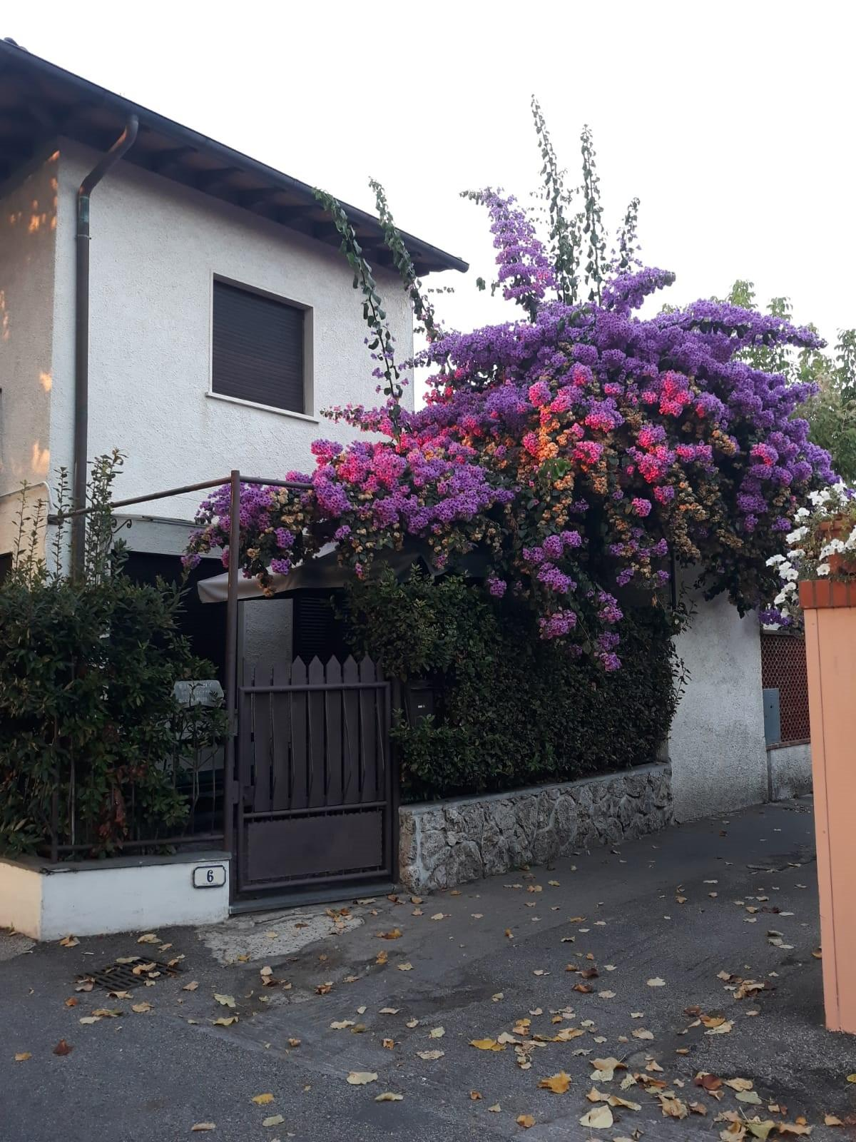 Portion of house for vendita in Forte dei Marmi (LU)