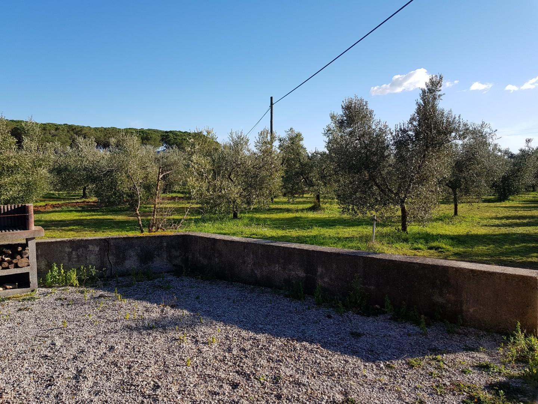 Annesso agricolo in vendita a Riotorto, Piombino (LI)