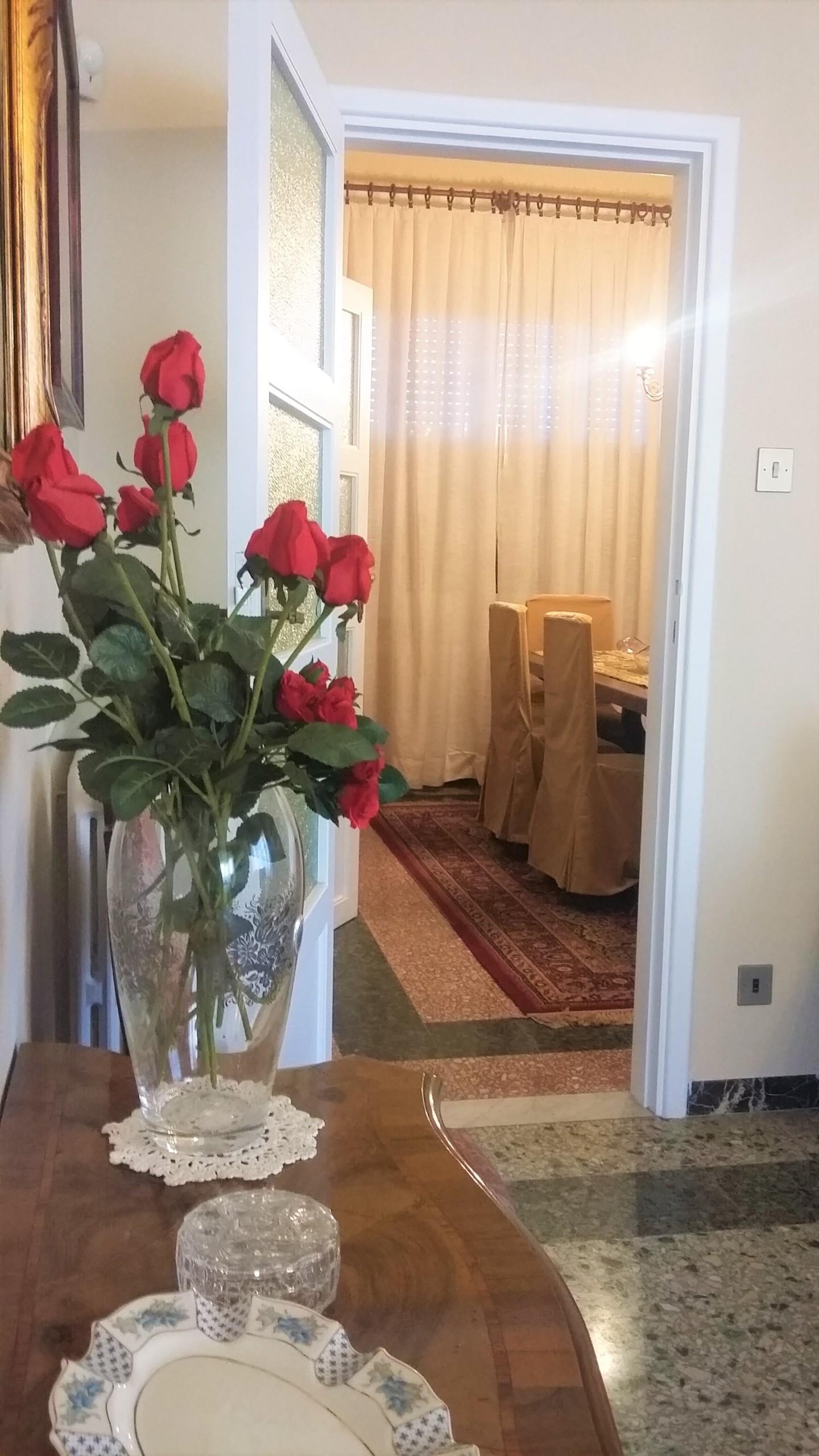 Appartamento in affitto, rif. afd823