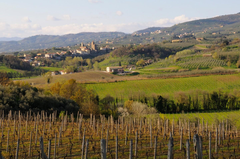 Terreno agricolo in vendita a Vinci (FI)