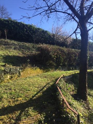 Foto 16/20 per rif. Pratolino