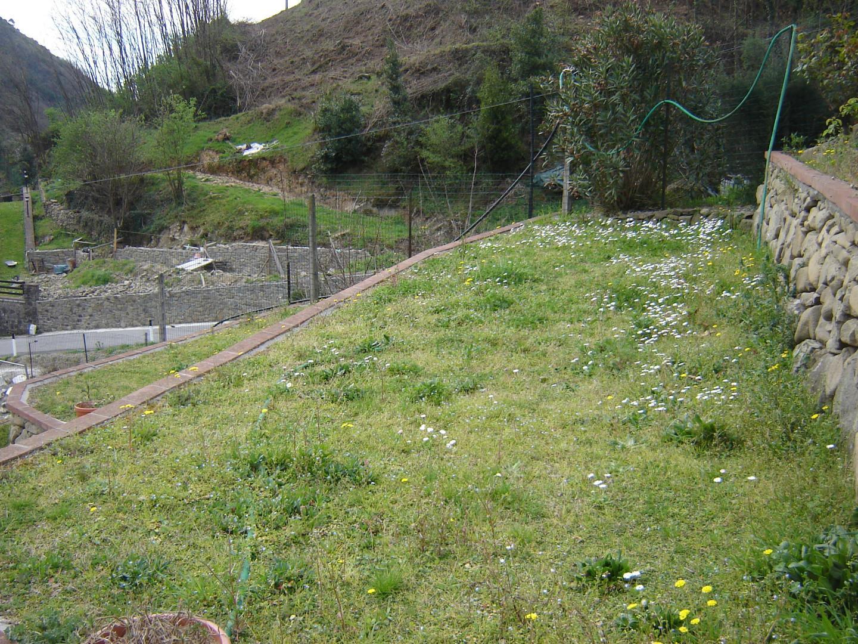 Foto 4/15 per rif. ap villa 185