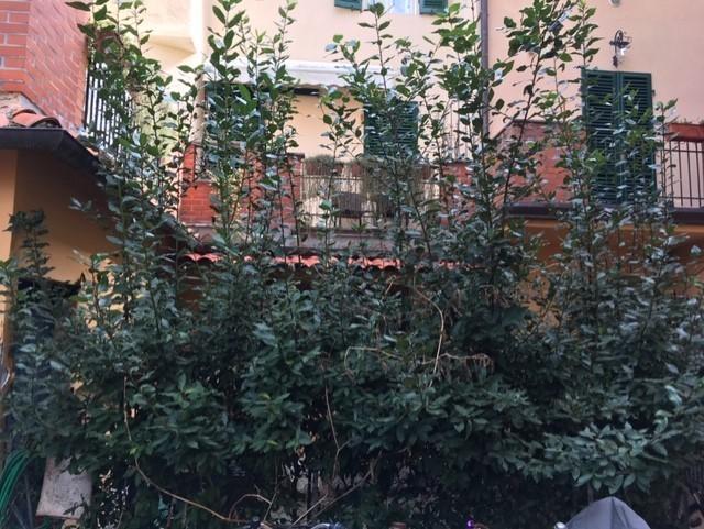 Appartamento in vendita, rif. 02119