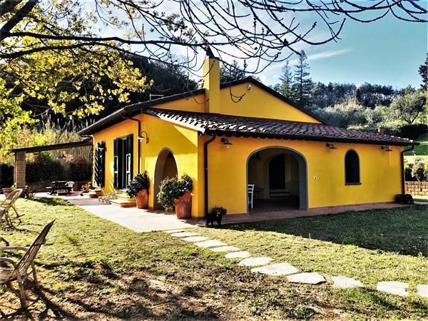 Villa singola a Collesalvetti