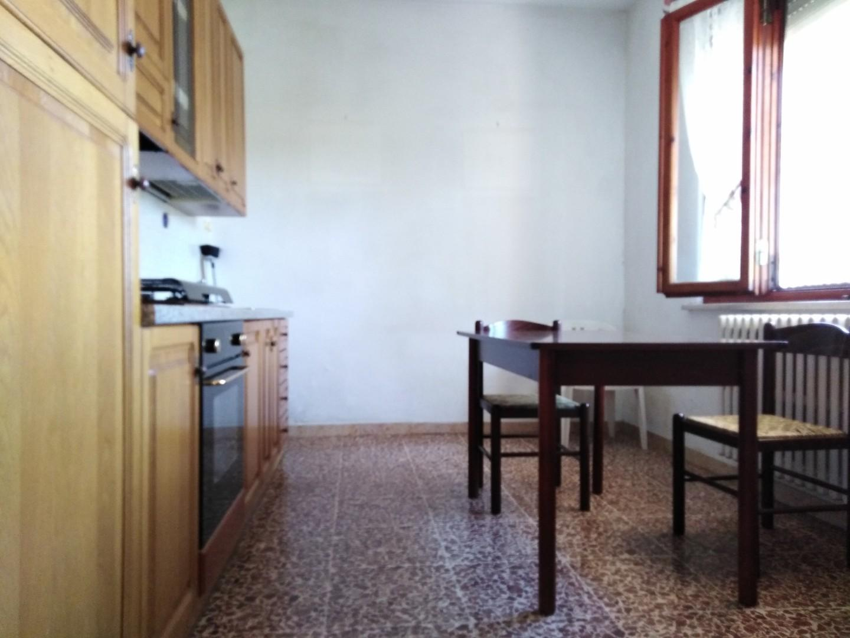 Viareggina in vendita - San Prospero Navacchio, Cascina