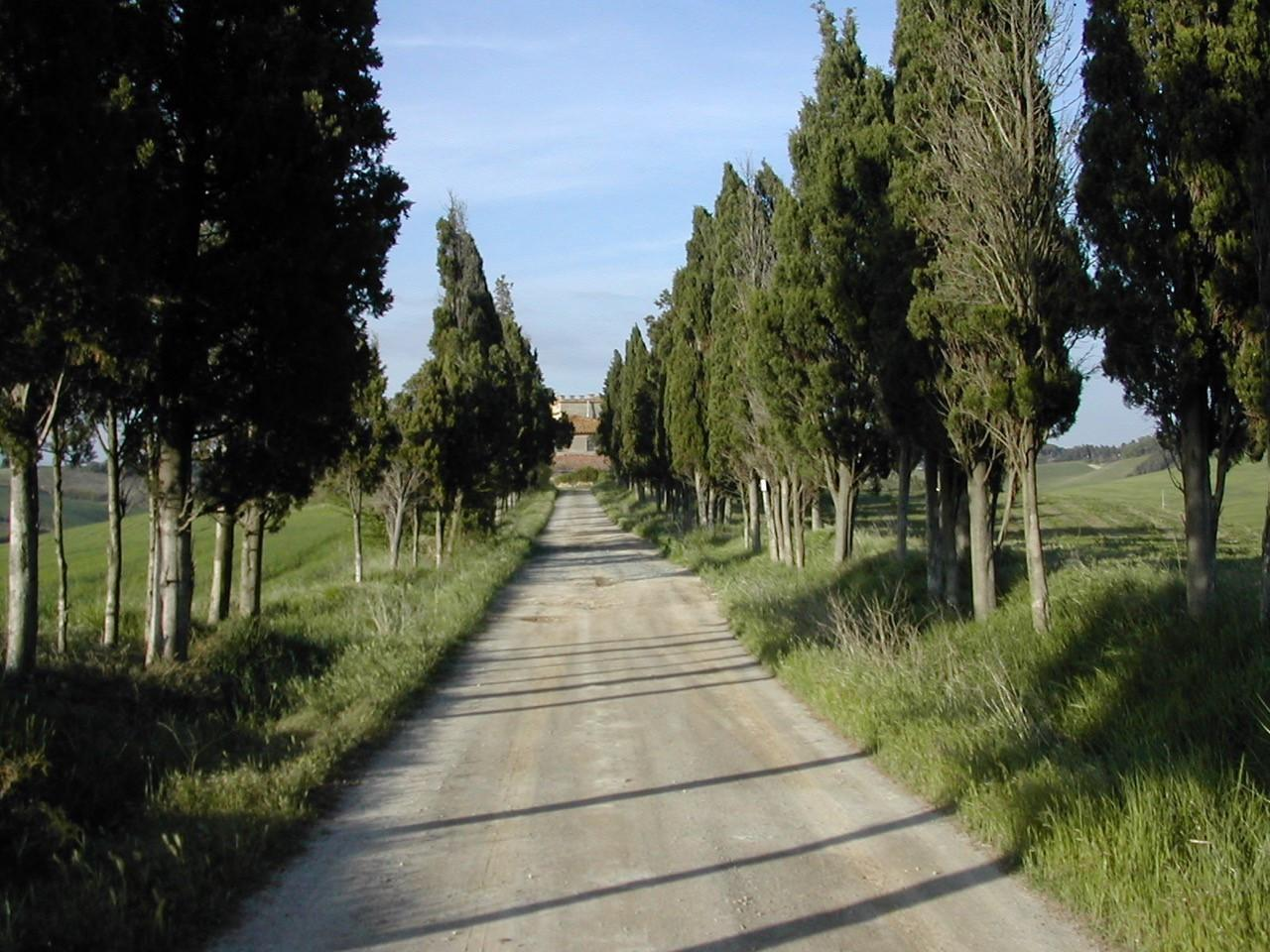 Rustico in vendita - Luciana, Fauglia