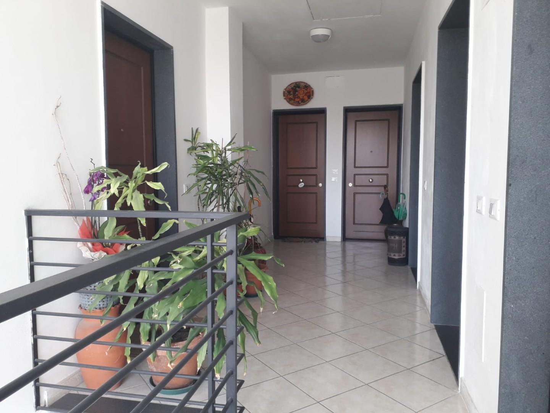 Appartamento in Affitto, rif. AC6564