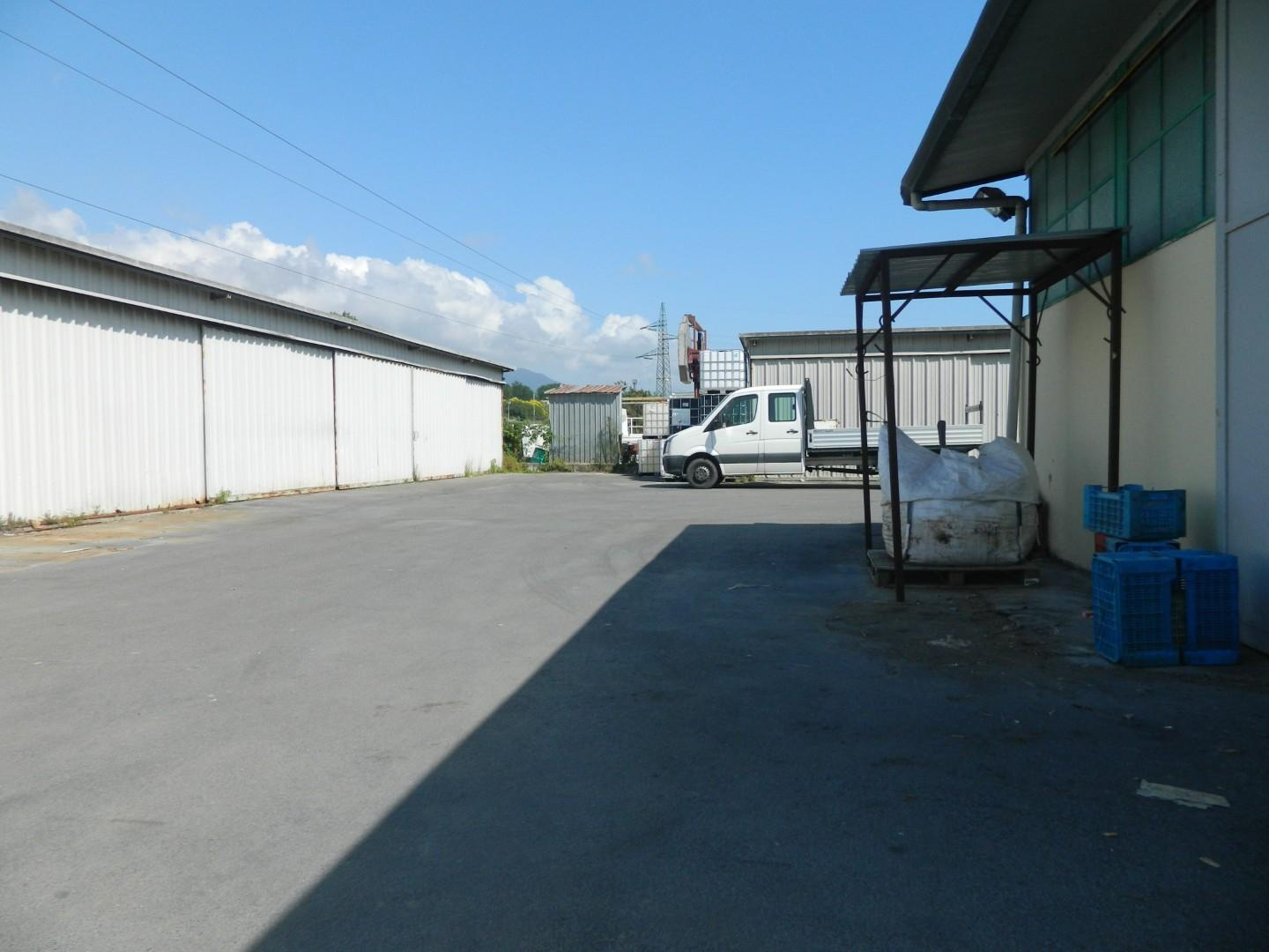 Capannone industriale in affitto commerciale, rif. 106671