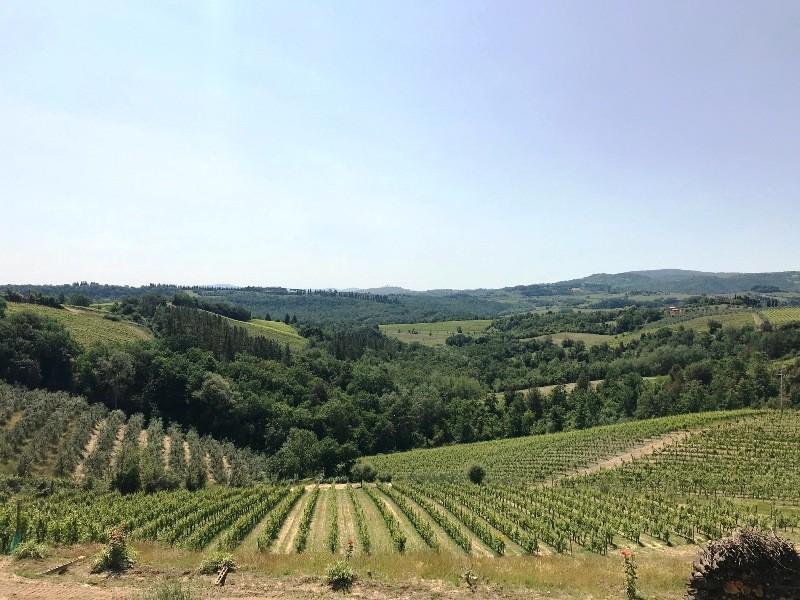 Rustico - Gambassi Terme (10/14)