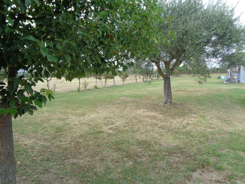 Terreno agricolo in vendita, rif.  T24/B