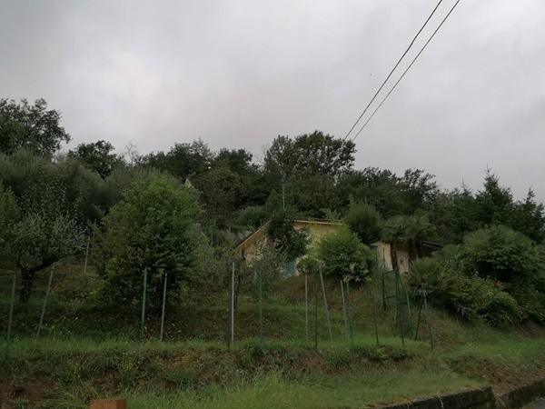 Villa singola in vendita a Nozzano San Pietro, Lucca
