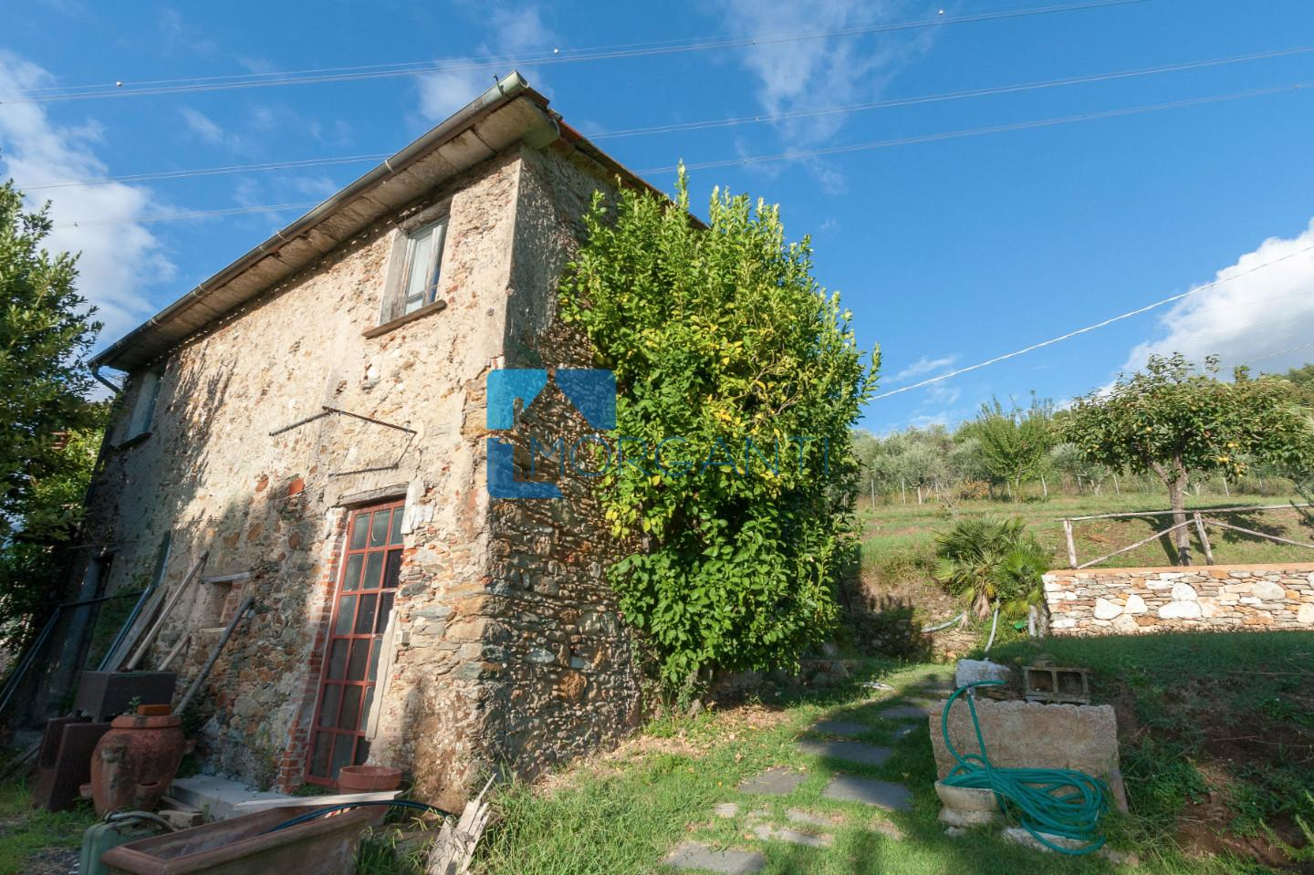 Farmhouse for sale in Pietrasanta (LU)