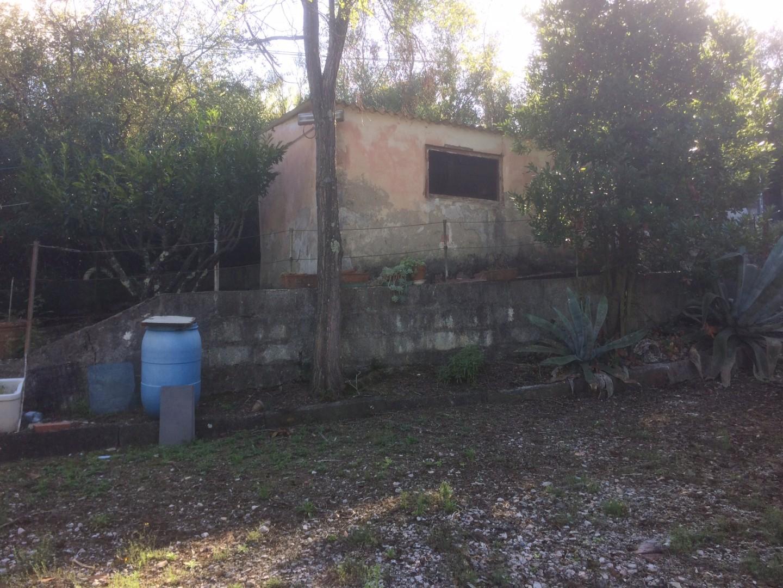 Annesso agricolo in vendita a Livorno